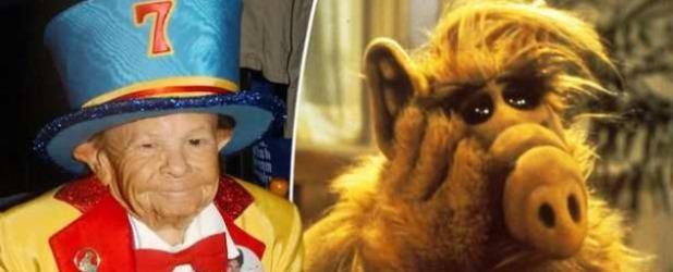 Alf'i canlandıran aktör komada