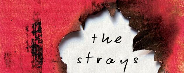 The Strays romanı dizi oluyor! The Strays nasıl bir dizi?