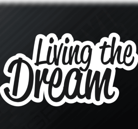 Comedy Central'dan yeni bir dizi: Living the Dream