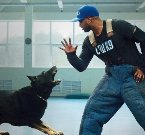 Netflix serisi Canine Intervention ile hem insanların hem köpeklerin yaşamı değişiyor!