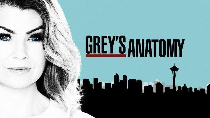 17-07/27/greys-anatomy.jpg