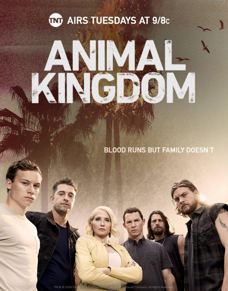 18-07/03/animal-kingdom-tnt.jpg