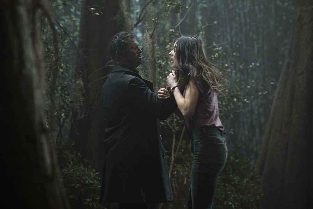 19-06/20/swamp-thing-1x04-foto1.jpg