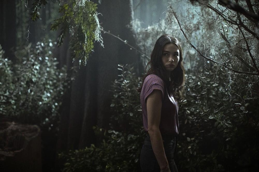 Swamp Thing 1.Sezon 1.Bölüm indir